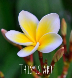 This Is Art 2nd edition by Ron Labryzz, #RLArt 28