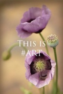 This Is Art 4th edition3