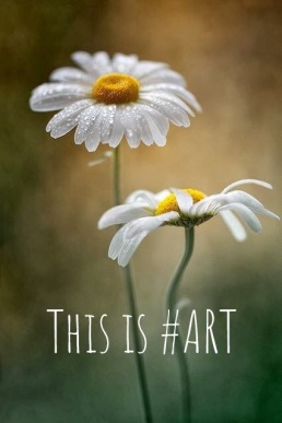 This Is Art 4th edition 7